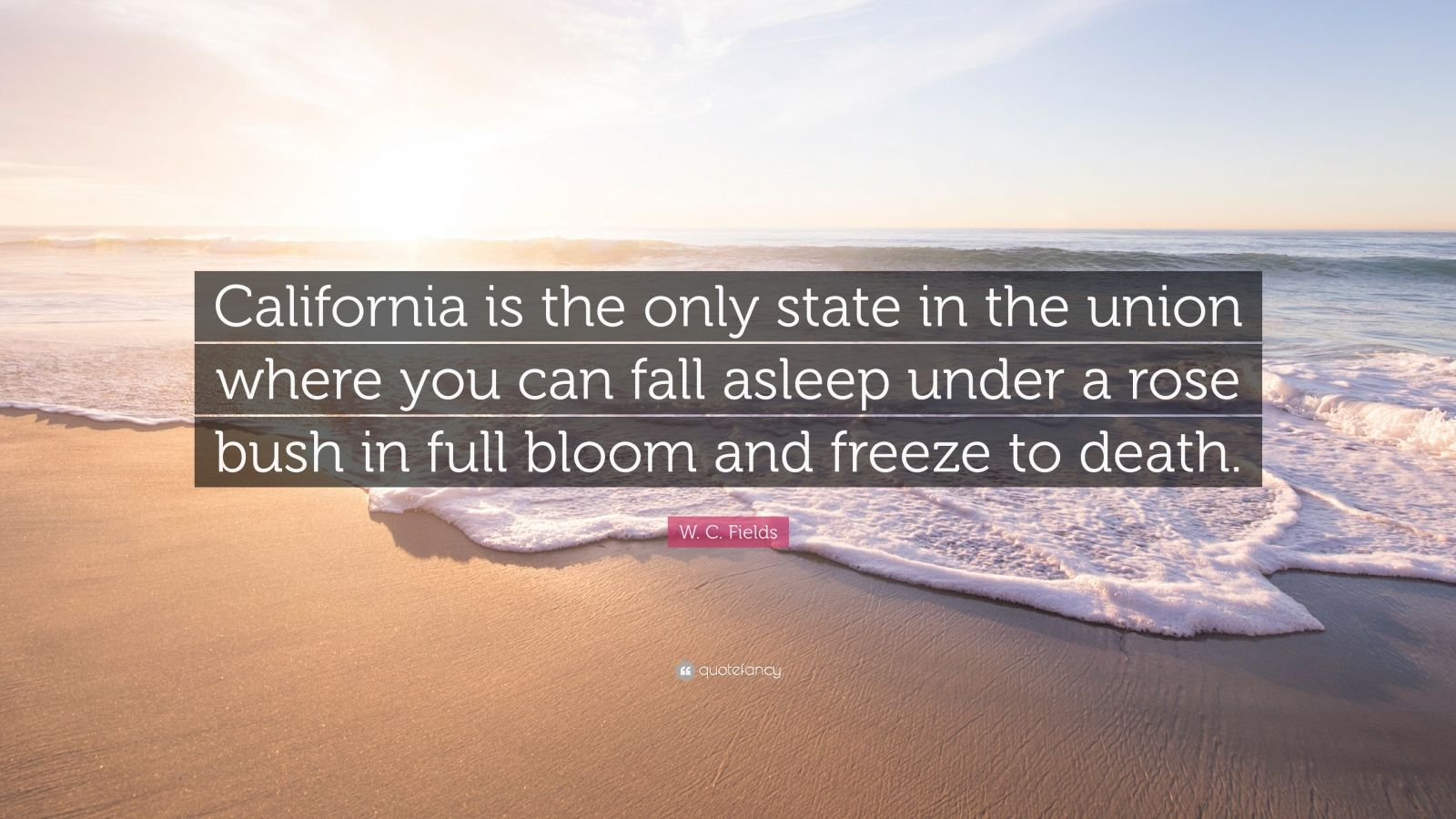 "W. C. Fields Quote: ""California is the only state in the union where you can fall asleep under a rose bush in full bloom and freeze to death."""