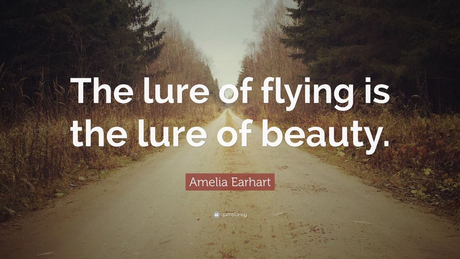 "Amelia Earhart Quote: ""The lure of flying is the lure of beauty."""