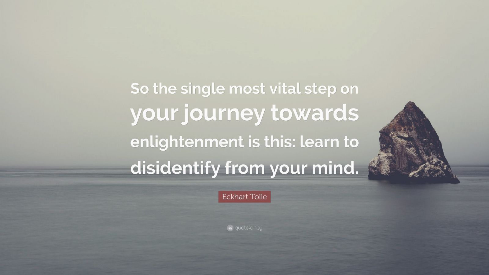 "Eckhart Tolle Quote: ""So the single most vital step on your journey towards enlightenment is this: learn to disidentify from your mind."""