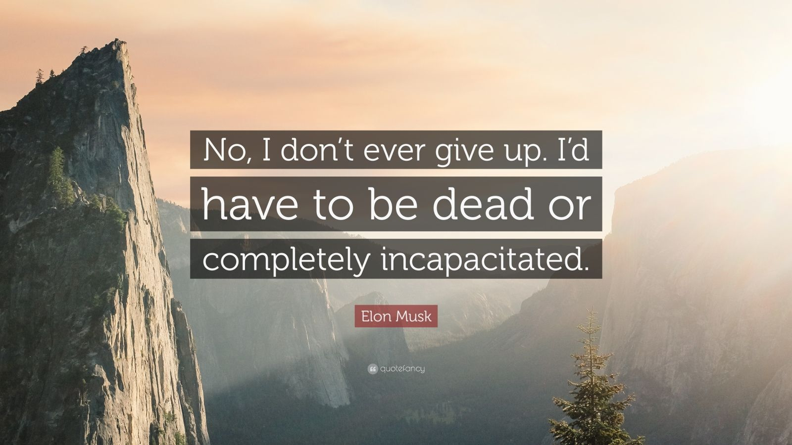 "Elon Musk Quote: ""No, I don't ever give up. I'd have to be dead or completely incapacitated."""