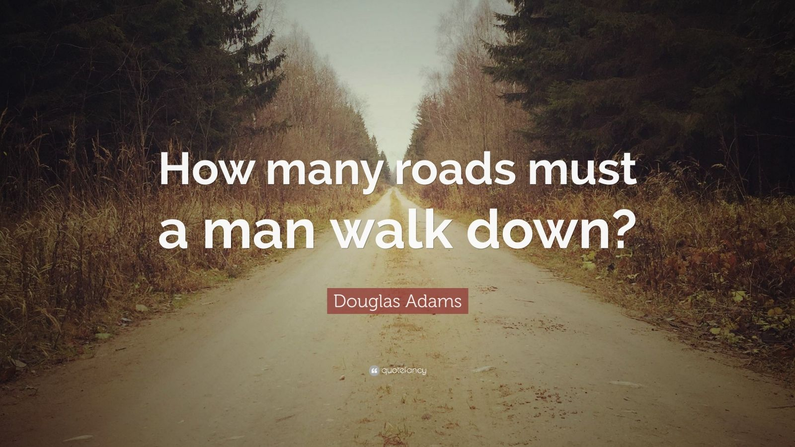"Douglas Adams Quote: ""How many roads must a man walk down?"""