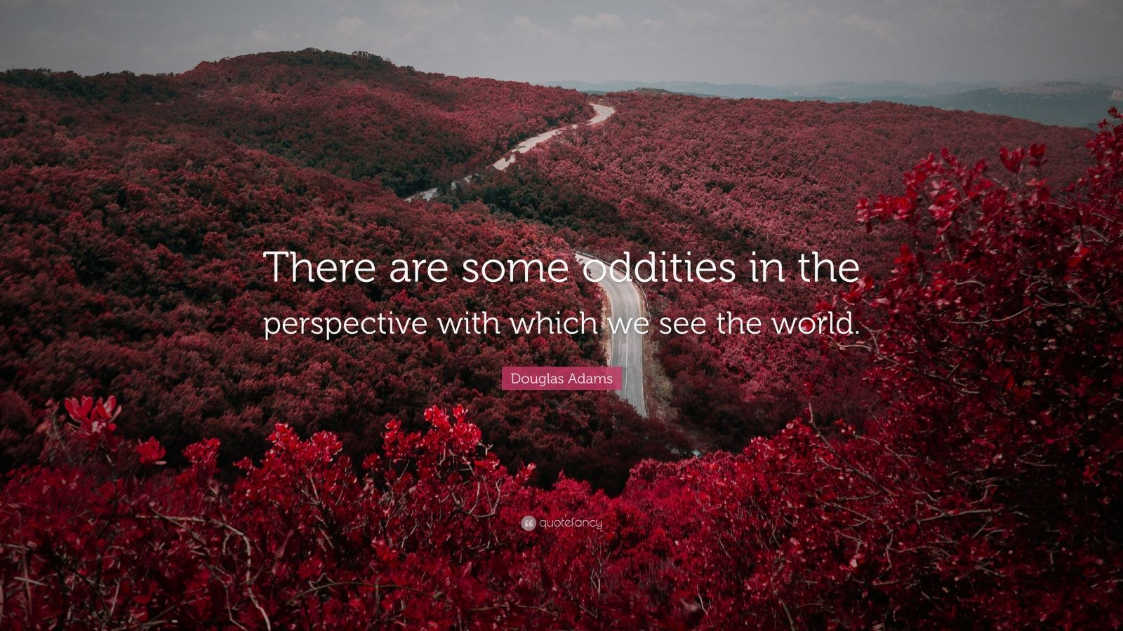 """Douglas Adams Quote: """"There are some oddities in the perspective with which we see the world."""""""