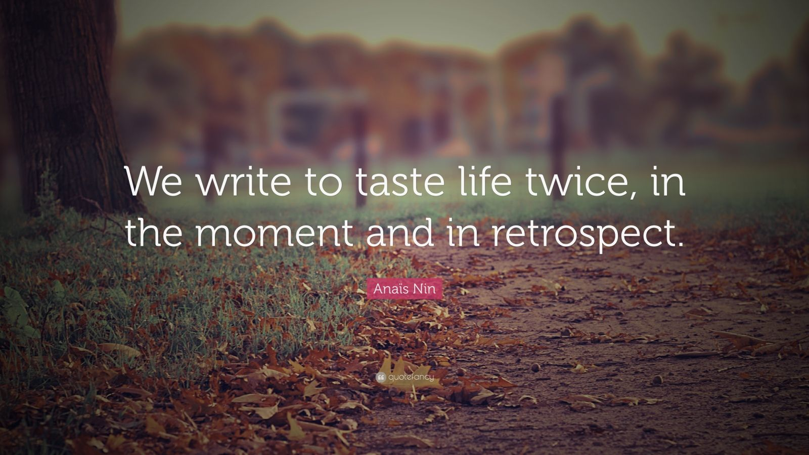 the creative writing moments in life Free creative writing papers,  animals fled to holes to live out the final moments of their life people were distraught, and chaos was invading every planet in .
