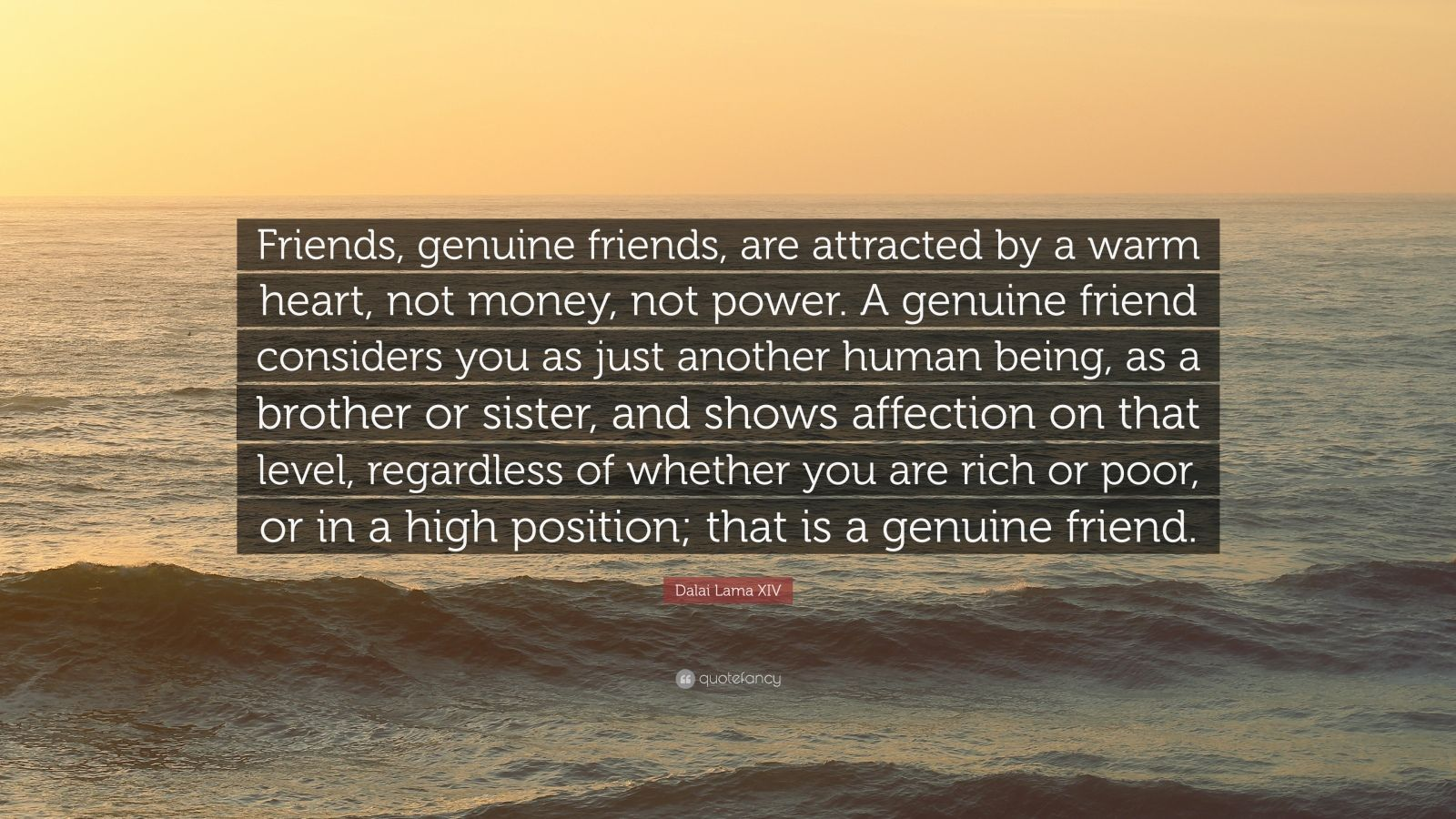 genuine friendships are hard to come What does it mean to have a genuine friendship with someone sarah july 2, 2014 share on facebook share on twitter shares: share on facebook share on twitter.