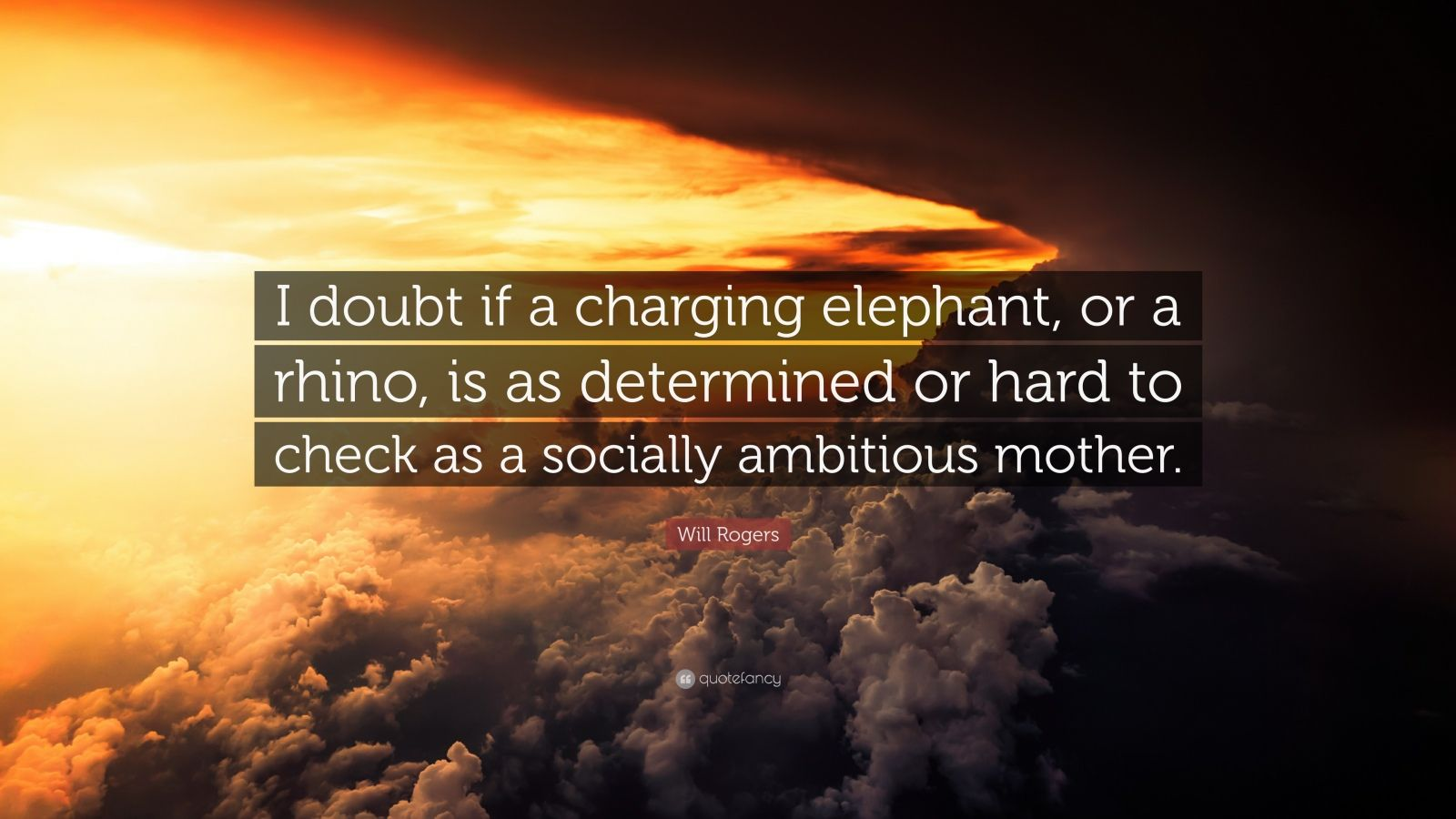 """Will Rogers Quote: """"I doubt if a charging elephant, or a rhino, is as determined or hard to check as a socially ambitious mother."""""""