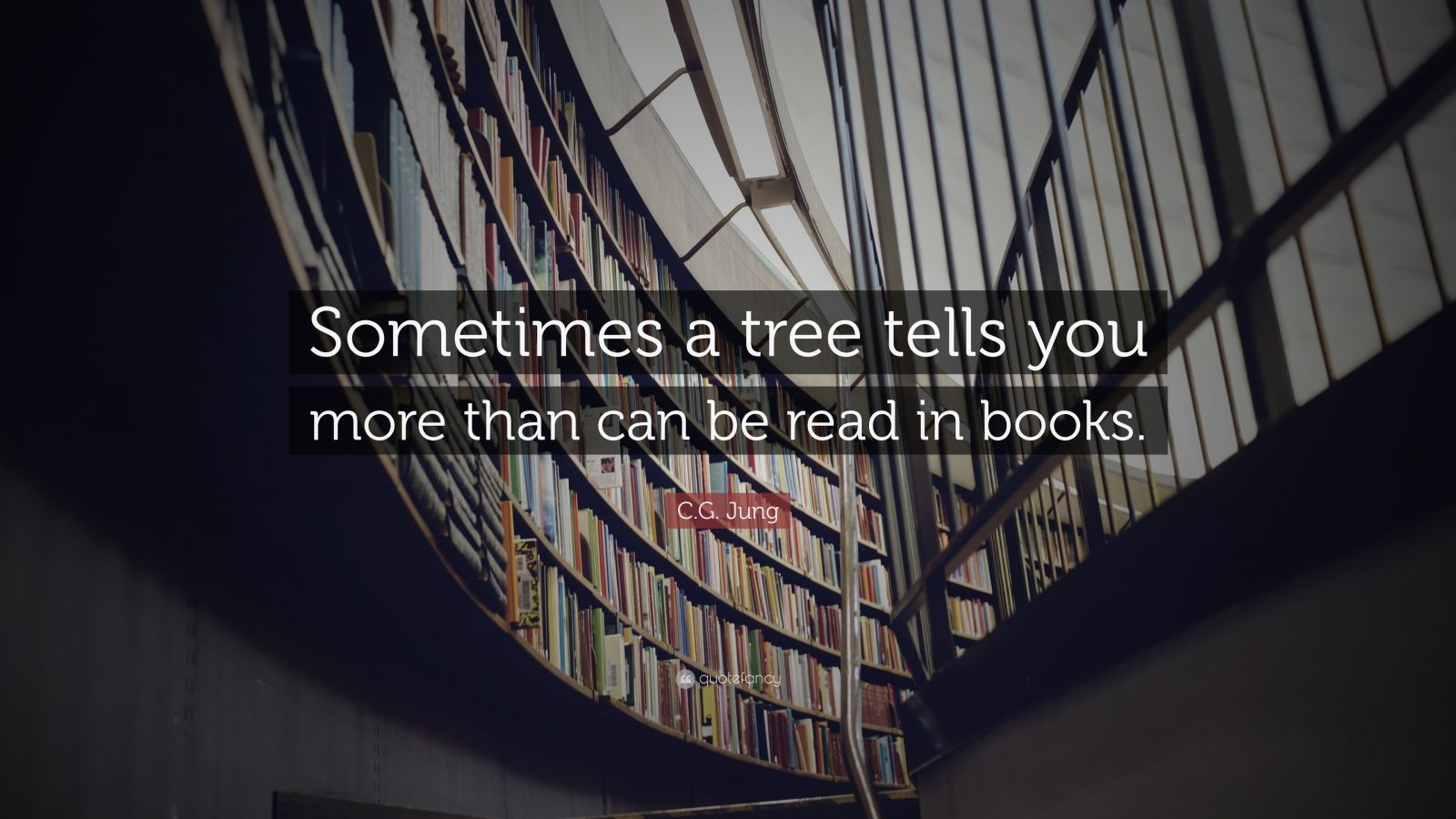 """C.G. Jung Quote: """"Sometimes a tree tells you more than can be read in books."""""""