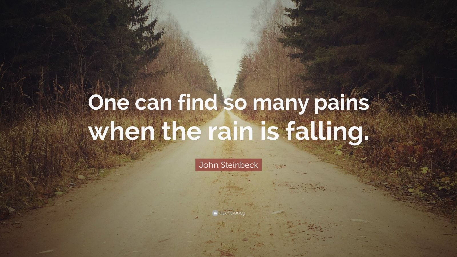 """John Steinbeck Quote: """"One can find so many pains when the rain is falling."""""""