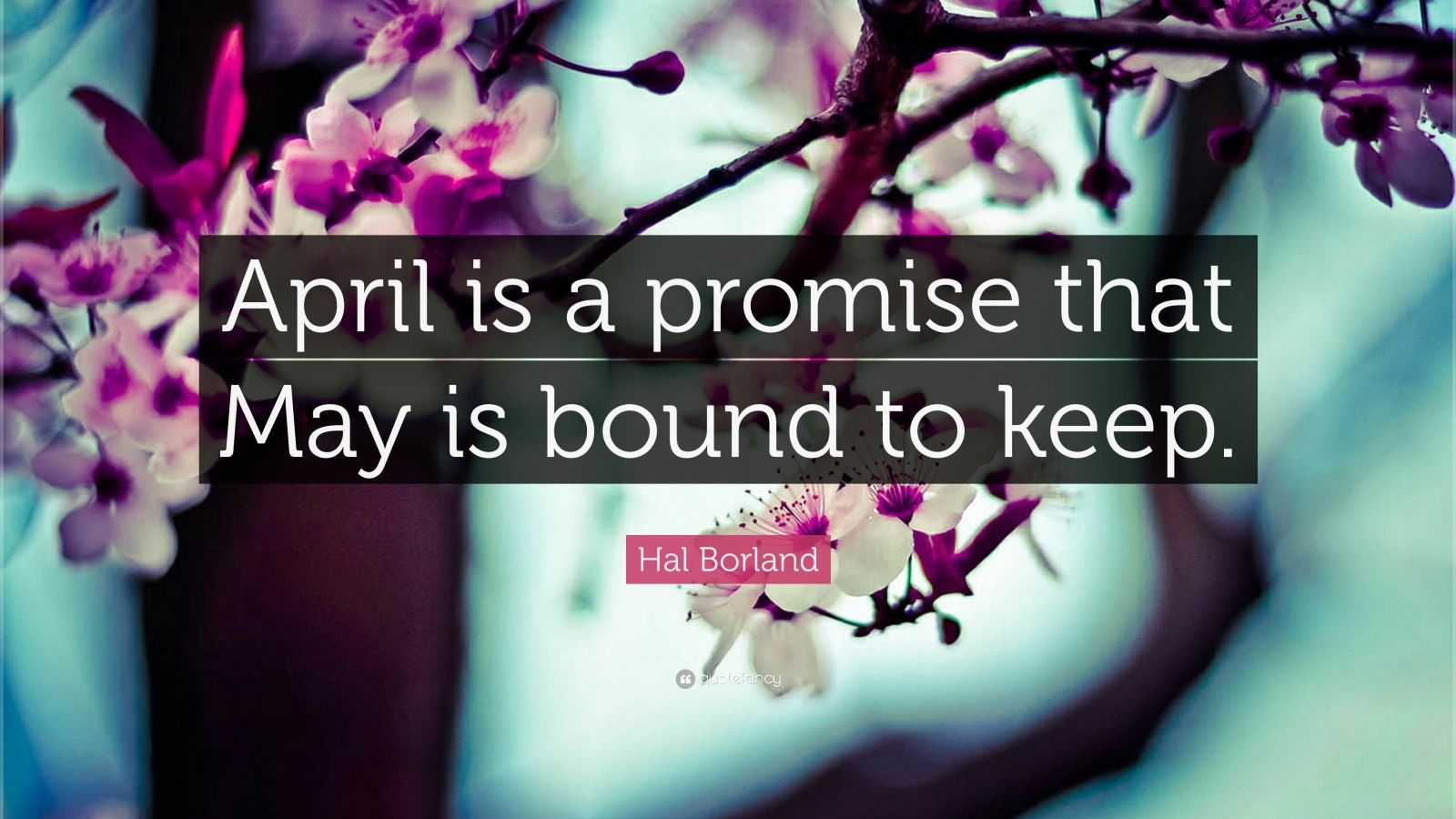 "Hal Borland Quote: ""April is a promise that May is bound to keep."""