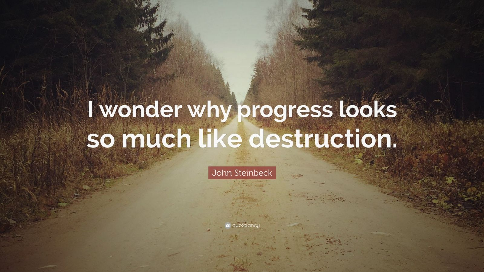 "John Steinbeck Quote: ""I wonder why progress looks so much like destruction."""