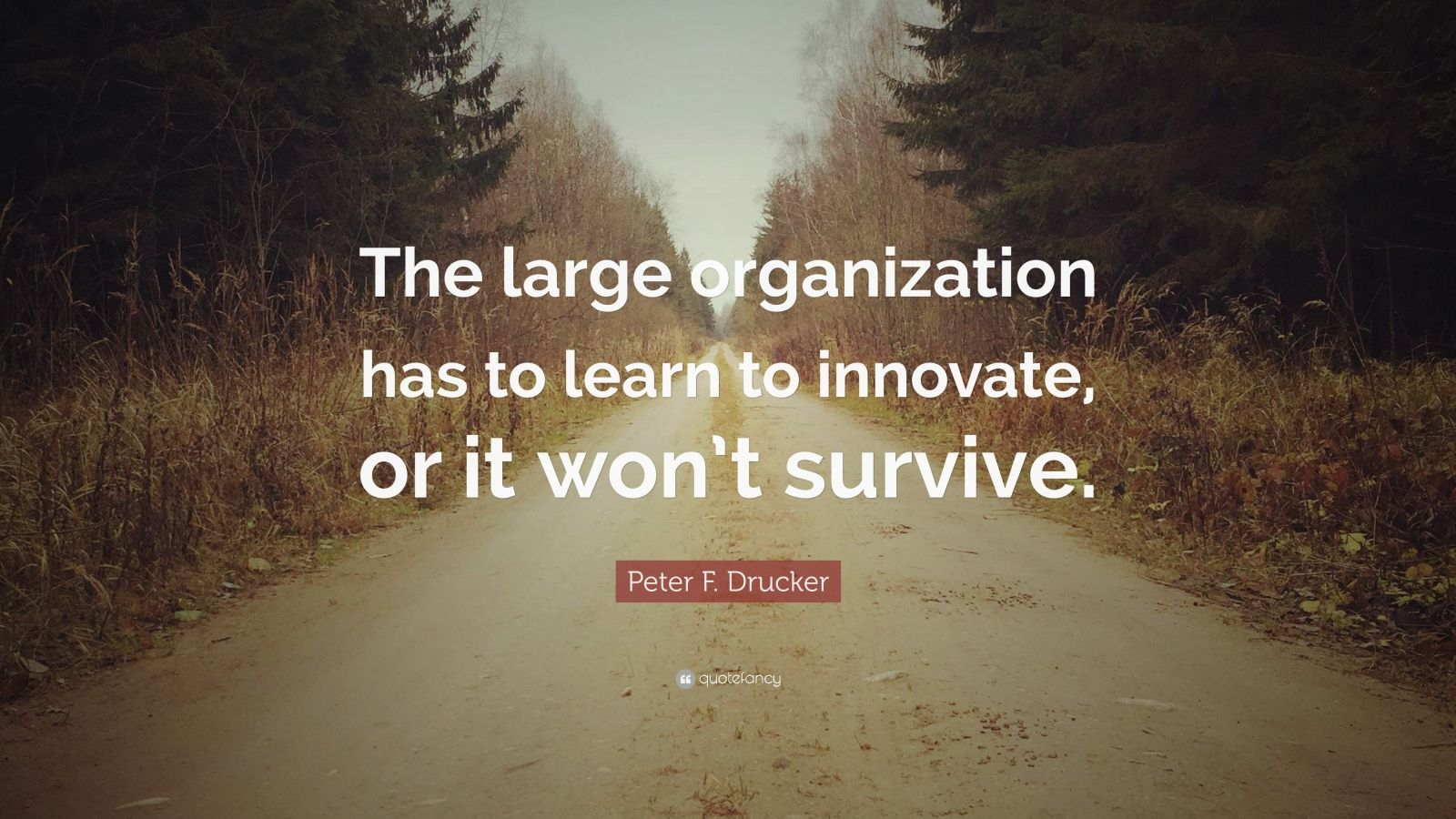 """Peter F. Drucker Quote: """"The large organization has to learn to innovate, or it won't survive."""""""