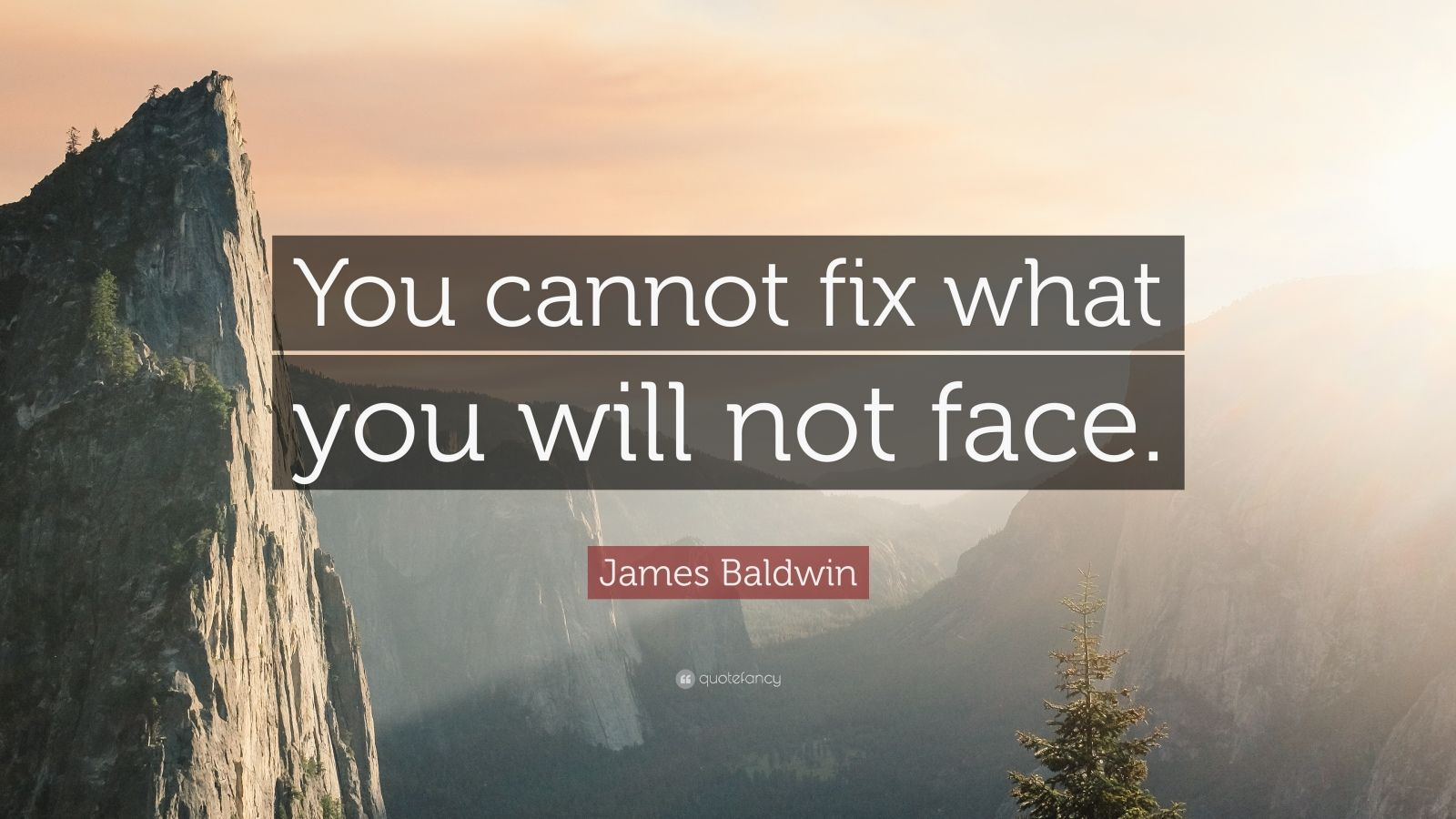 "James Baldwin Quote: ""You cannot fix what you will not face."""