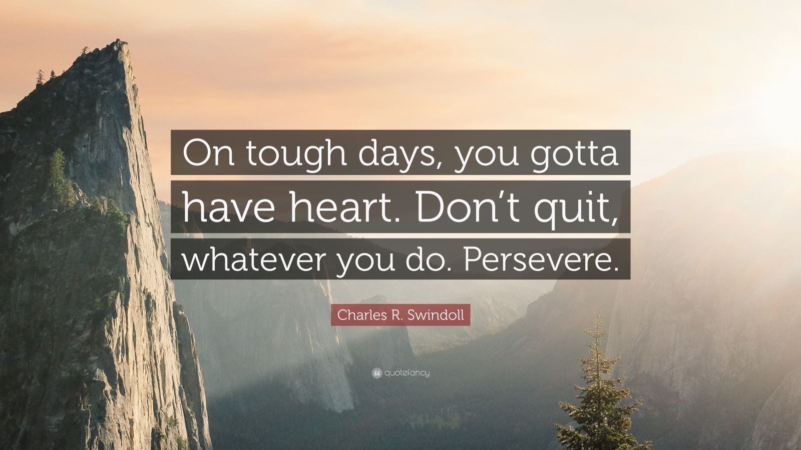 """Charles R. Swindoll Quote: """"On tough days, you gotta have heart. Don't quit, whatever you do. Persevere."""""""