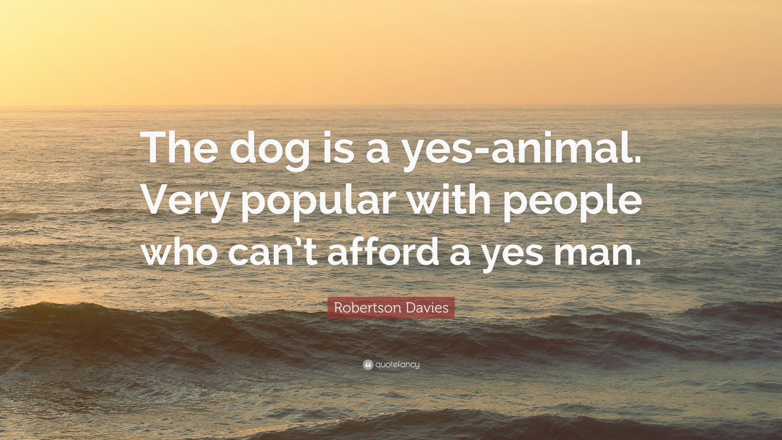 """Robertson Davies Quote: """"The dog is a yes-animal. Very popular with people who can't afford a yes man."""""""