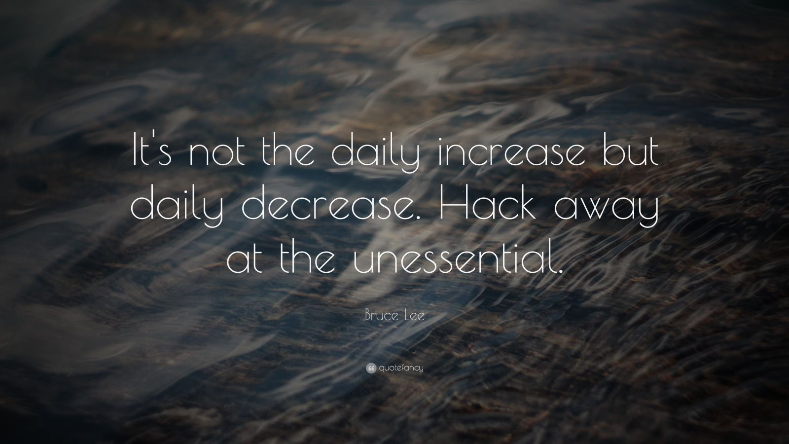 "Bruce Lee Quote: ""It's not the daily increase but daily decrease. Hack away at the unessential."""