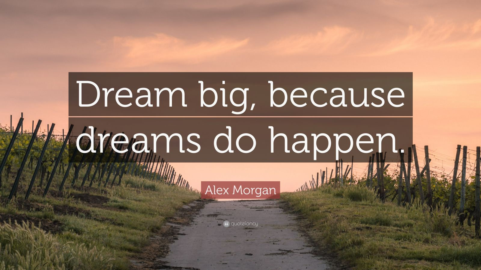 Alex Morgan Quote Dream Big Because Dreams Do Happen