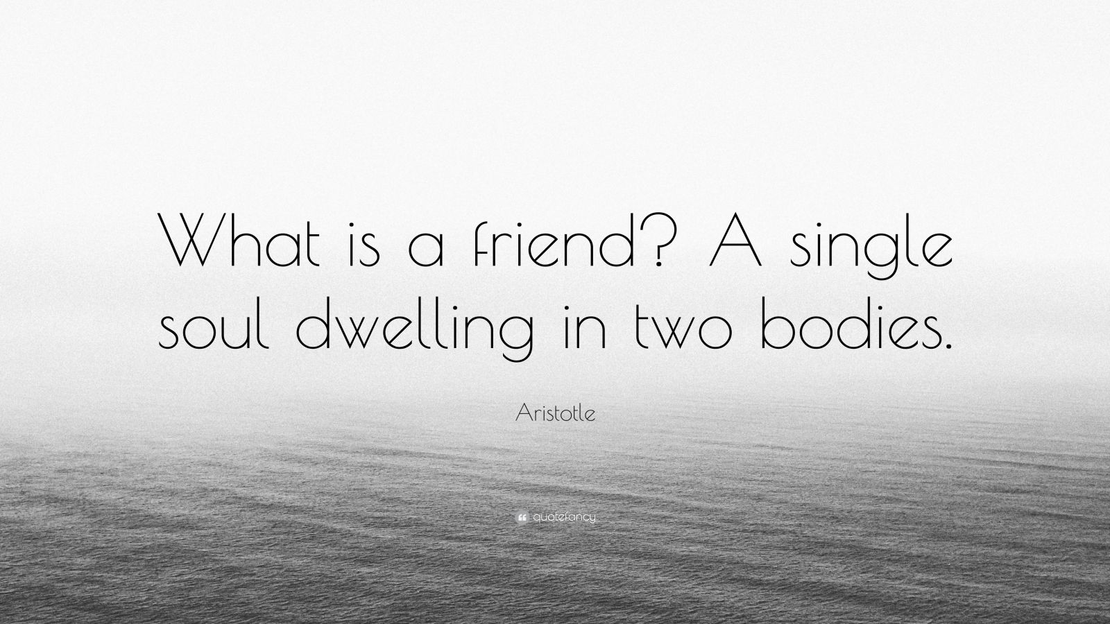 friendship is a single soul dwelling in two bodies essay Report Abuse