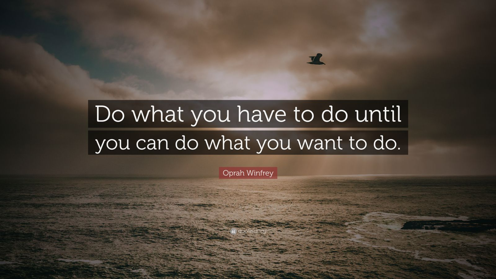 "Oprah Winfrey Quote: ""Do What You Have To Do Until You Can"