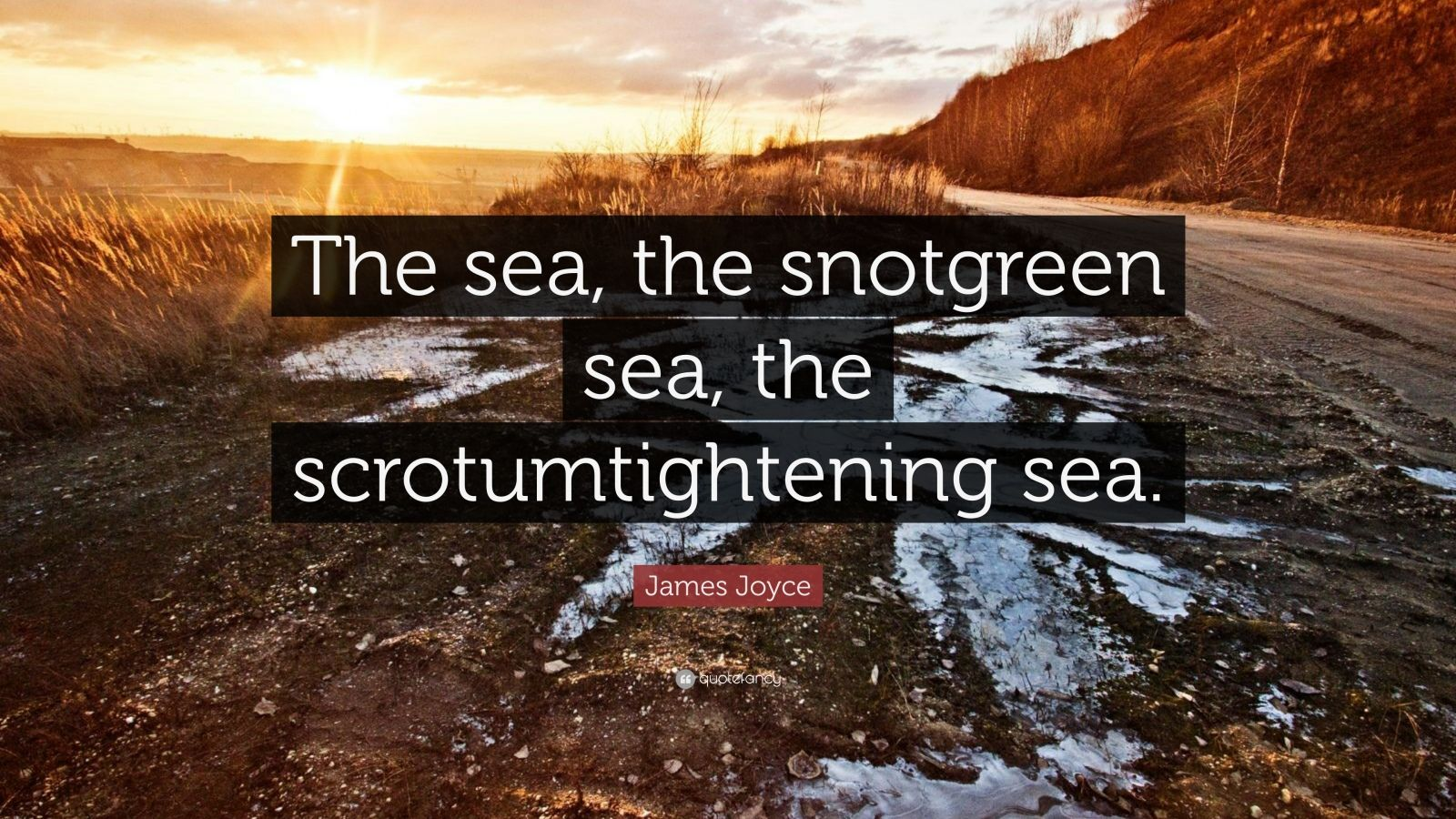 "Quote About The Sea: James Joyce Quote: ""The Sea, The Snotgreen Sea, The"