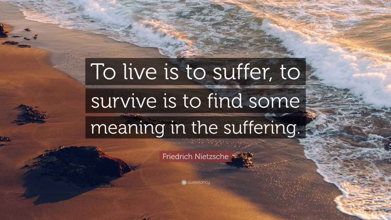 To Live Is To Suffer Dmx Quote
