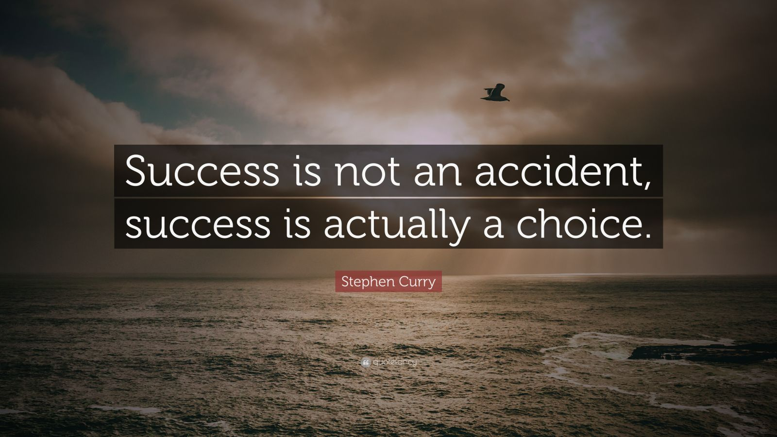 """Stephen Curry Quote: """"Success Is Not An Accident, Success"""