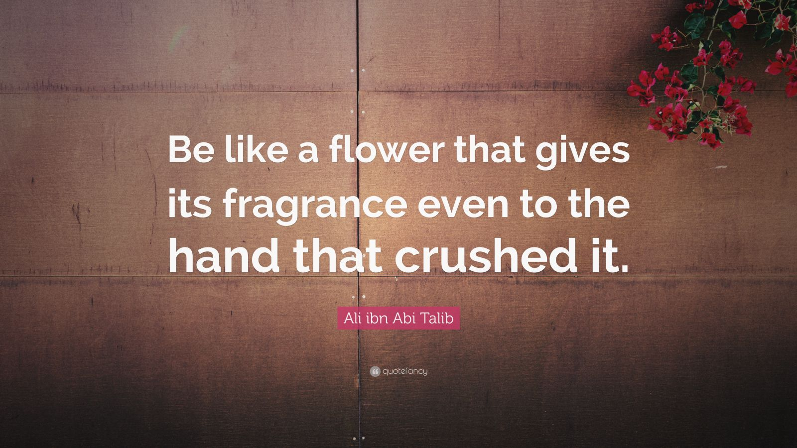 "Flower Quotes: ""Be like a flower that gives its fragrance even to the hand that crushed it."" — Ali ibn Abi Talib"