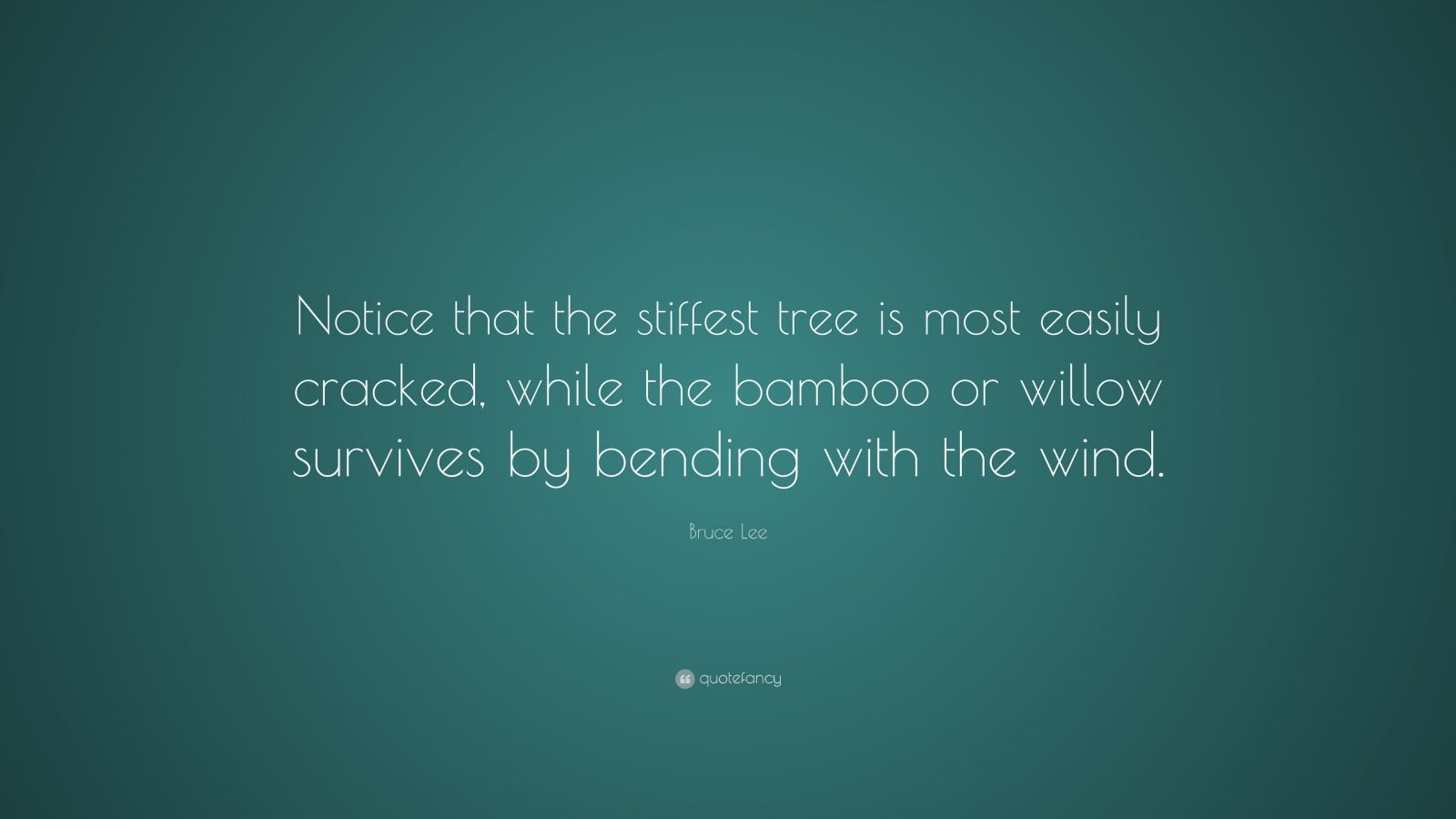 """Bruce Lee Quote: """"Notice that the stiffest tree is most easily cracked, while the bamboo or willow survives by bending with the wind."""""""