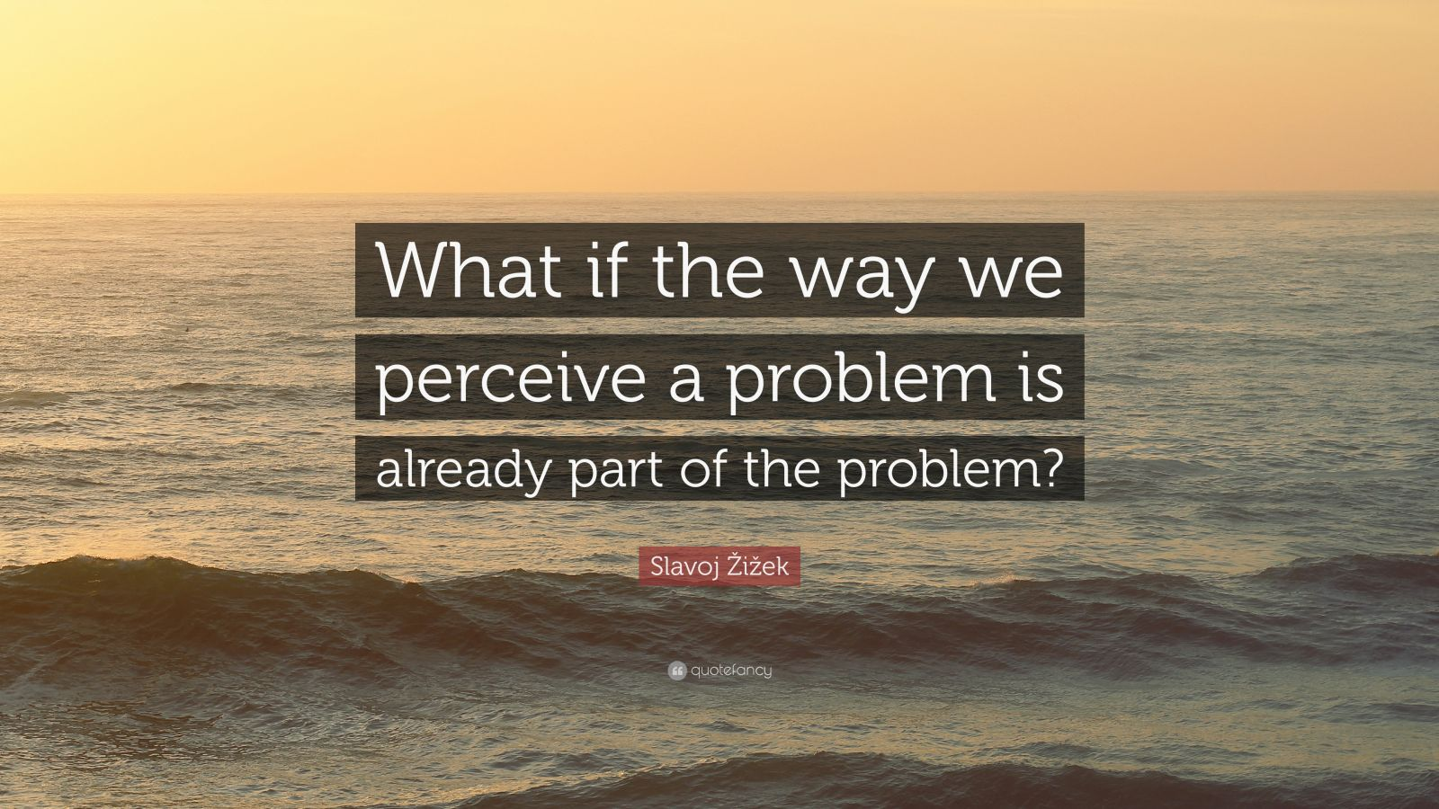the way we perceive the world