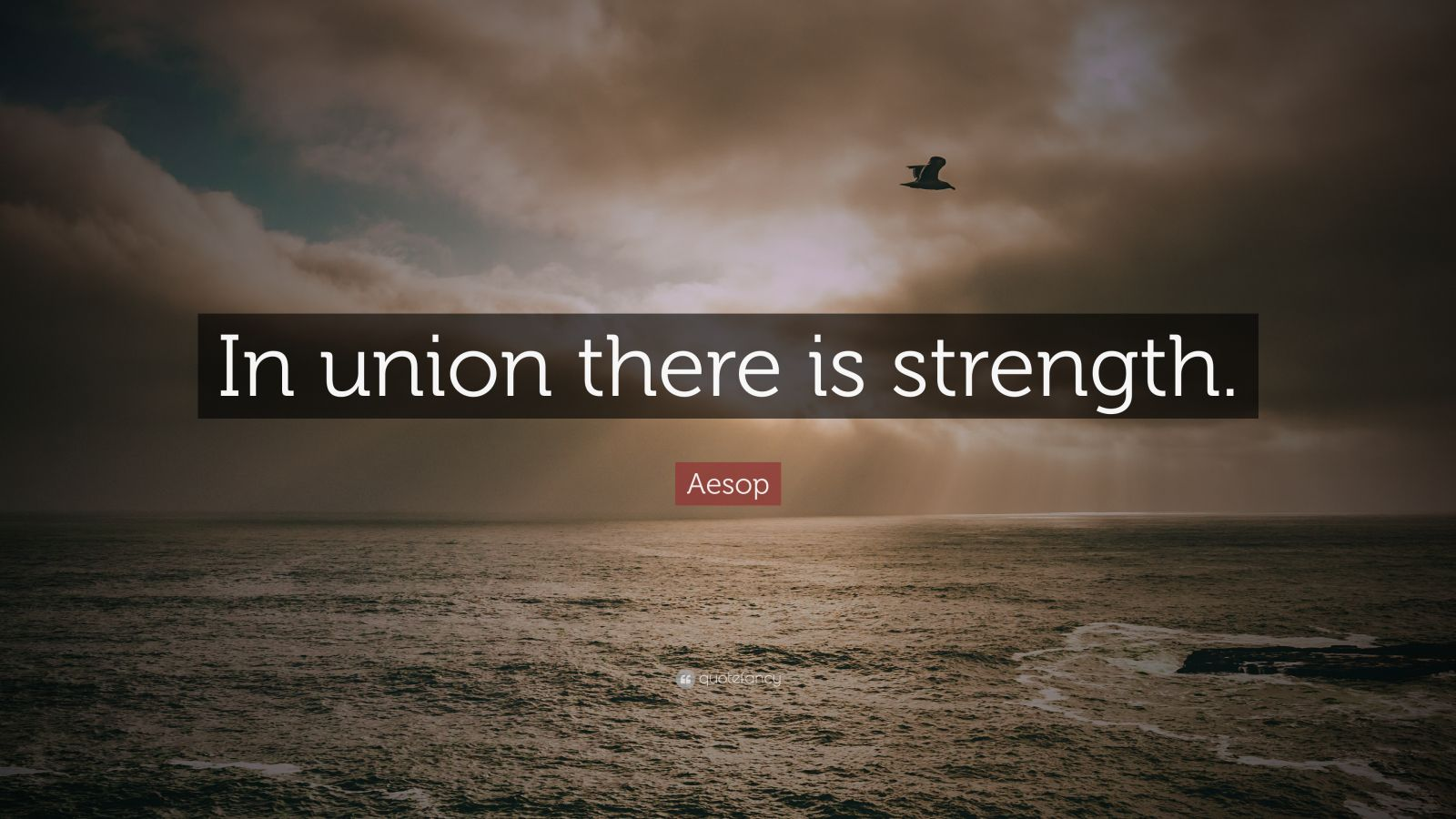 """Aesop Quote: """"In Union There Is Strength."""" (12 Wallpapers"""