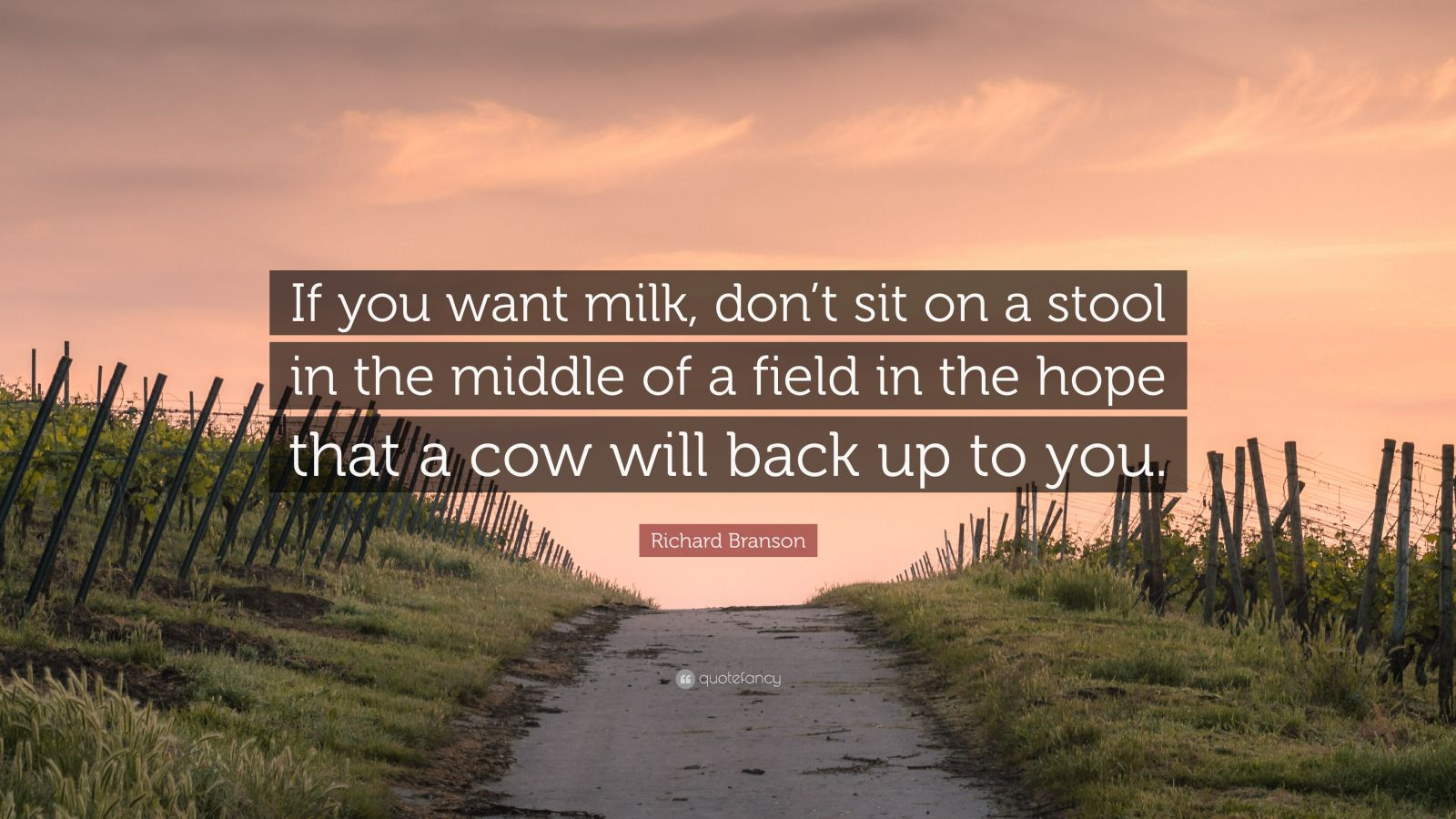 "Richard Branson Quote: ""If you want milk, don't sit on a stool in the middle of a field in the hope that a cow will back up to you."""