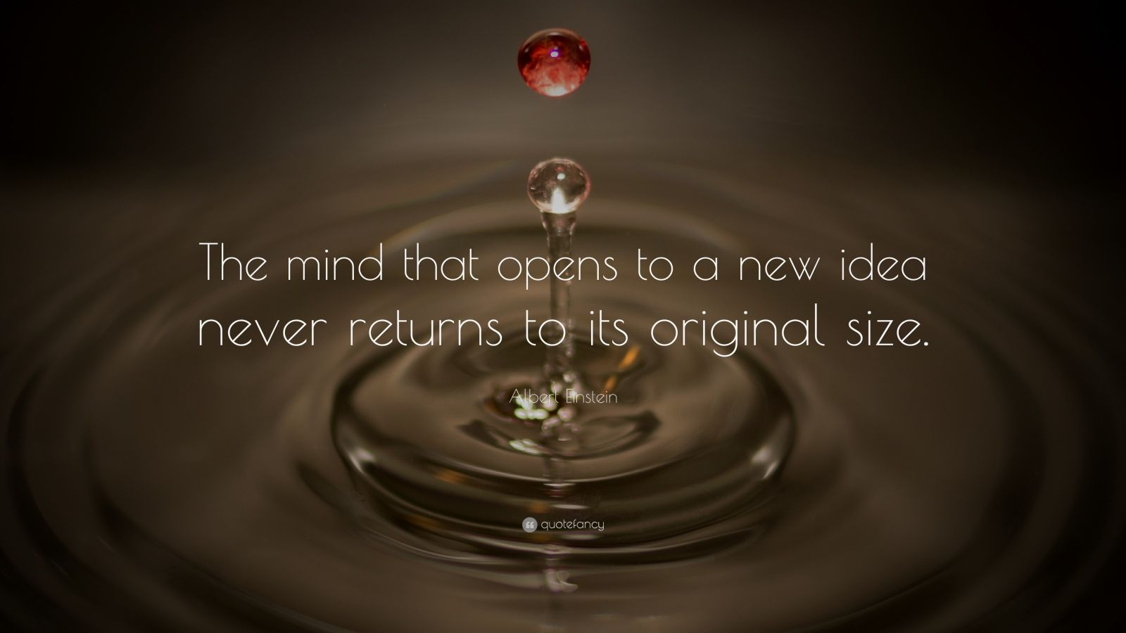 "Albert Einstein Quote: ""The mind that opens to a new idea never returns to its original size."""