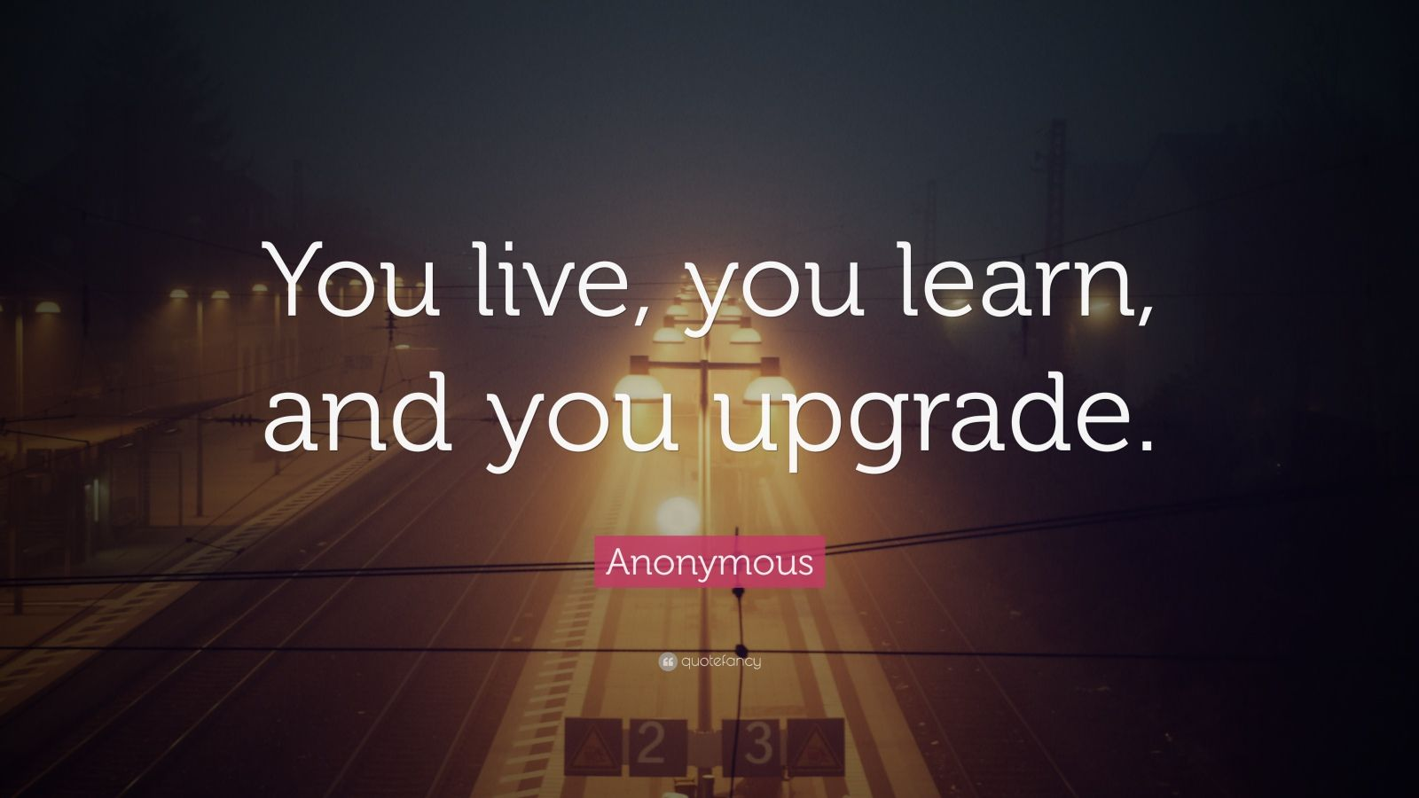 "Anonymous Quote: ""You Live, You Learn, And You Upgrade"