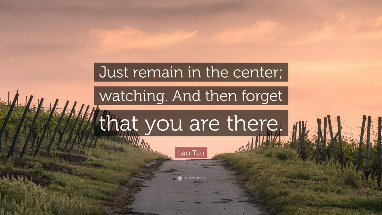 """Lao Tzu Quote: """"Just remain in the center; watching. And then forget that you are there."""""""