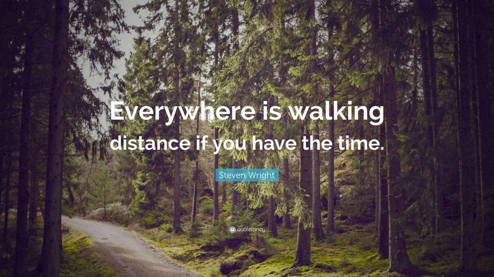 """Steven Wright Quote: """"Everywhere is walking distance if you have the time."""""""