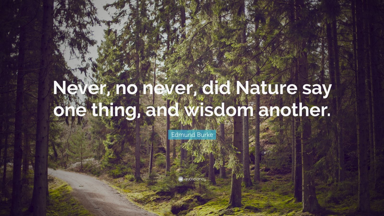 """Edmund Burke Quote: """"Never, no never, did Nature say one thing, and wisdom another."""""""