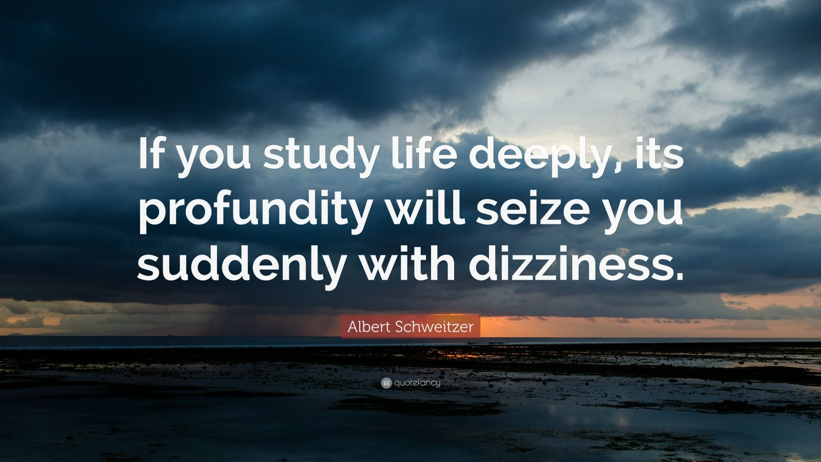 """Albert Schweitzer Quote: """"If you study life deeply, its profundity will seize you suddenly with dizziness."""""""