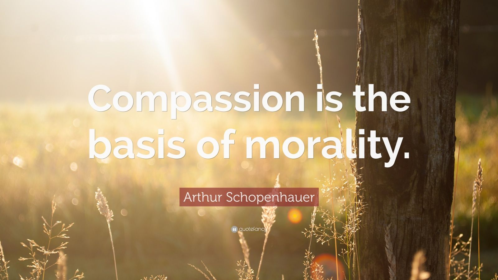 """essay on compassion is the basis of all morality His essay, """"famine, affluence, and morality,"""" focuses on the morality is the basis of life universal compassion is the only guarantee of morality."""