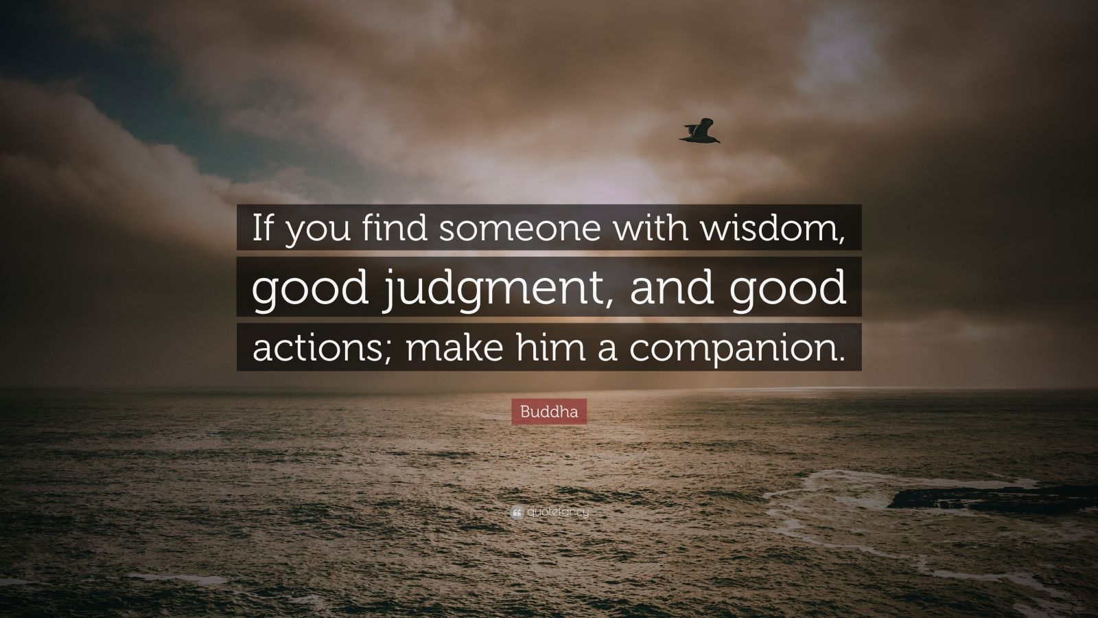 "Buddha Quote: ""If you find someone with wisdom, good judgment, and good actions; make him a companion."""