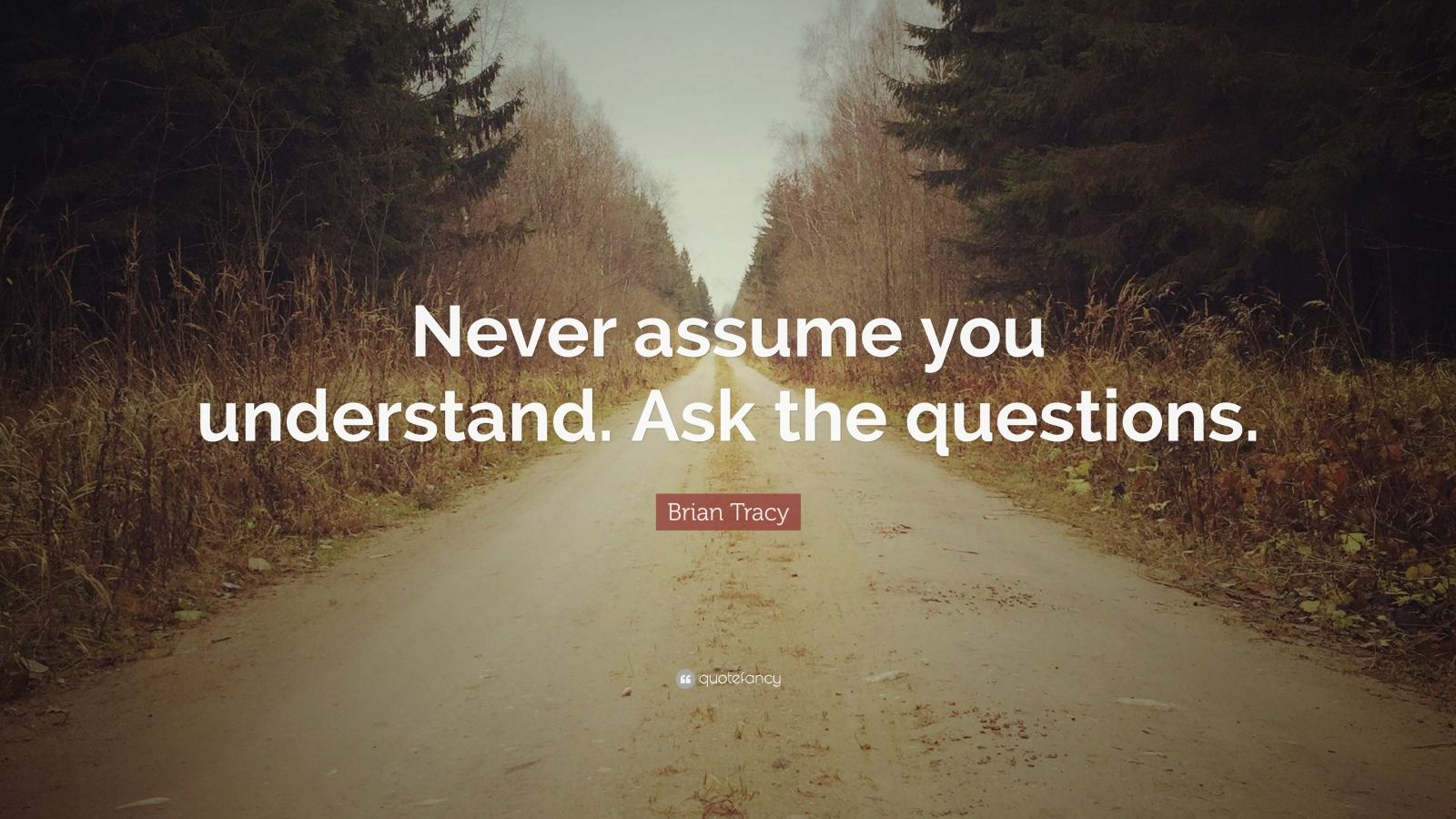 """Brian Tracy Quote: """"Never assume you understand. Ask the questions."""""""
