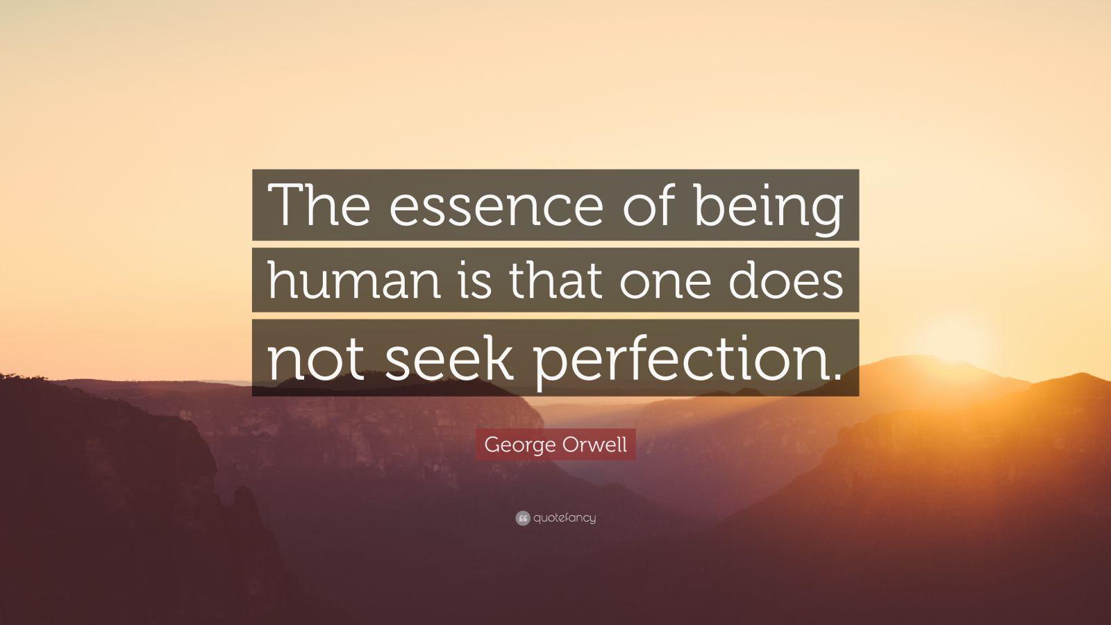 Essence of humanity essay