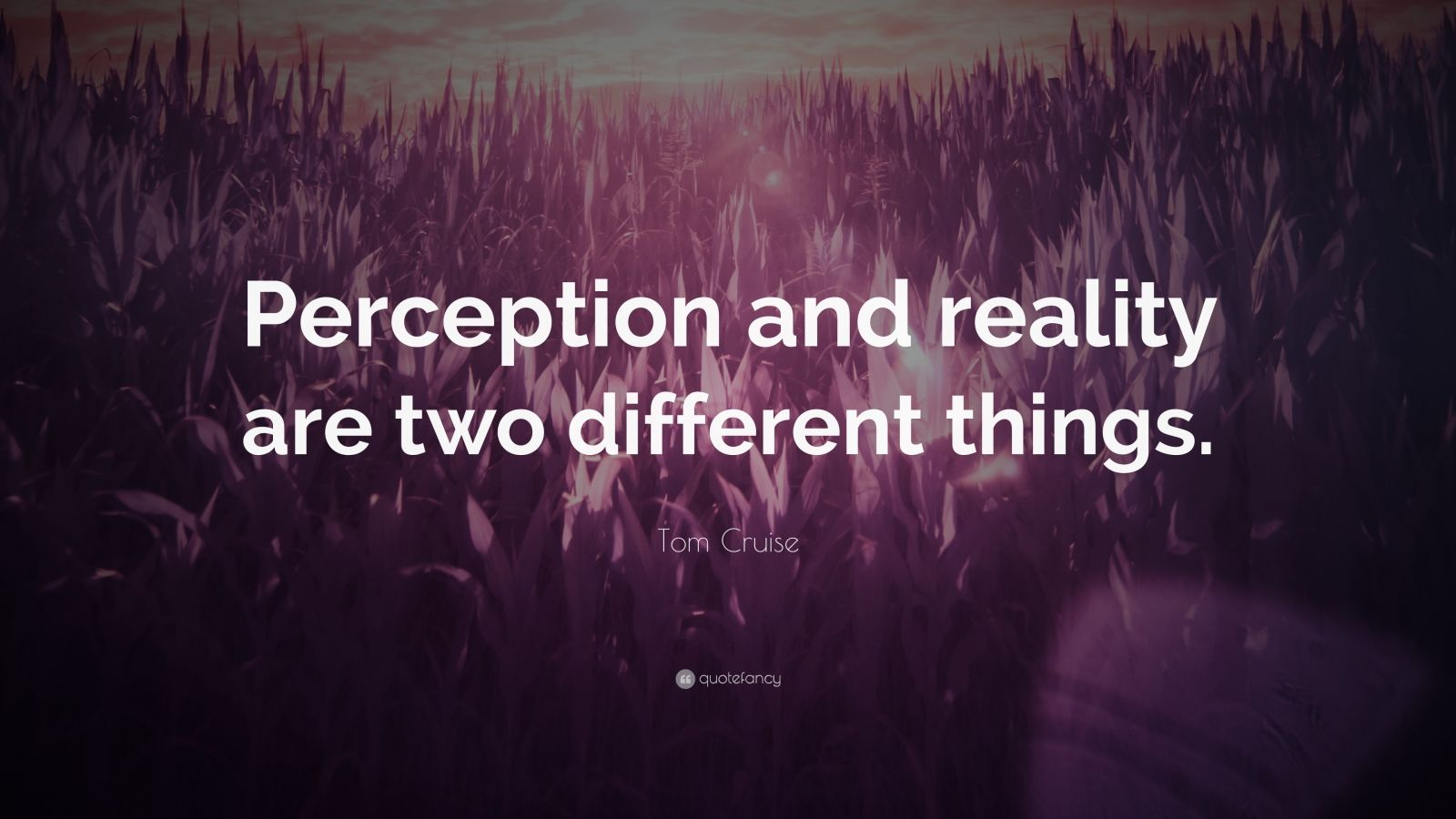 perception and reality essays In this essay we look at the theories of plato, descartes and locke and their  views on what reality is, we look at what perception means to.
