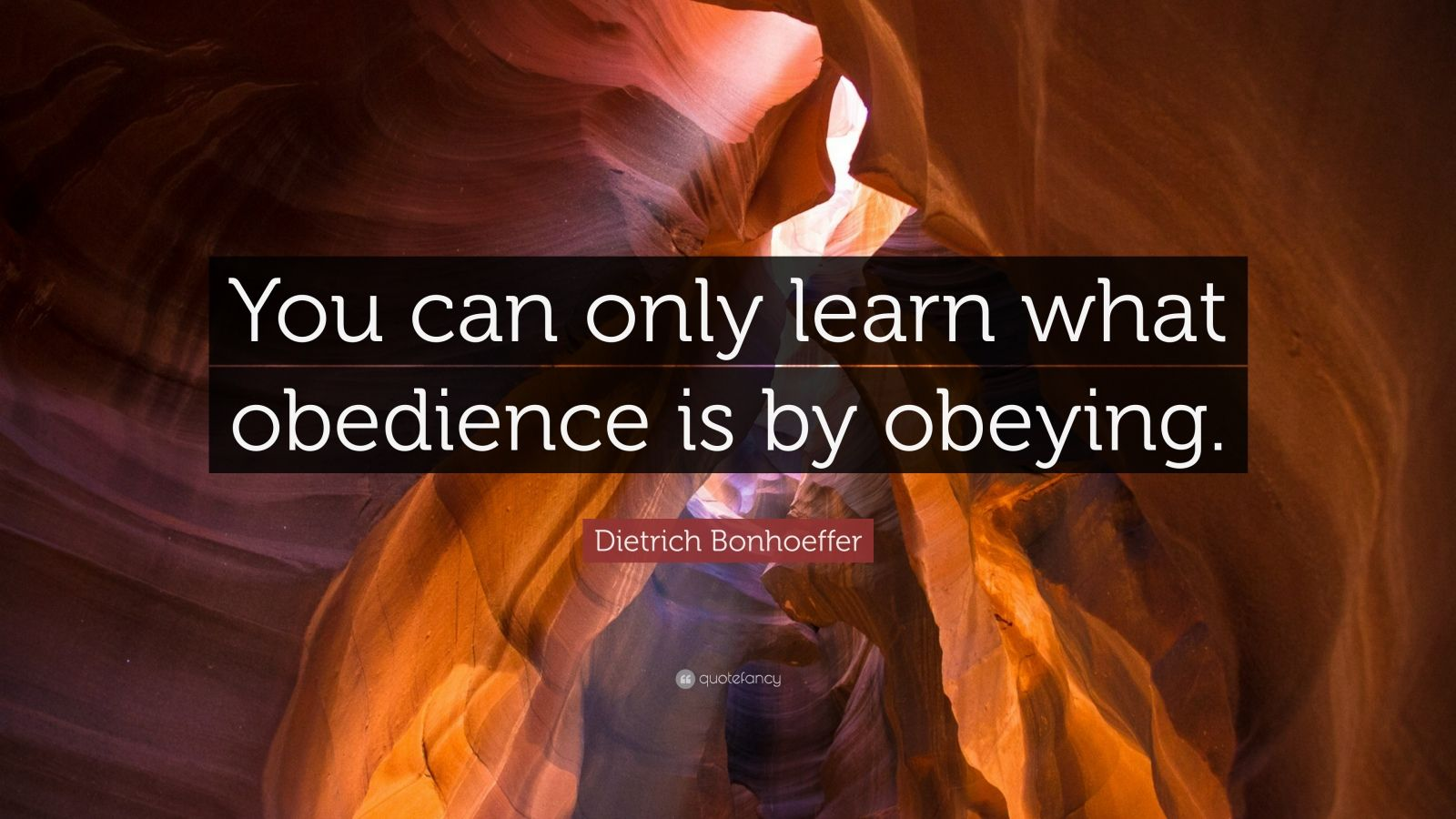 "Dietrich Bonhoeffer Quote: ""You can only learn what obedience is by obeying."""