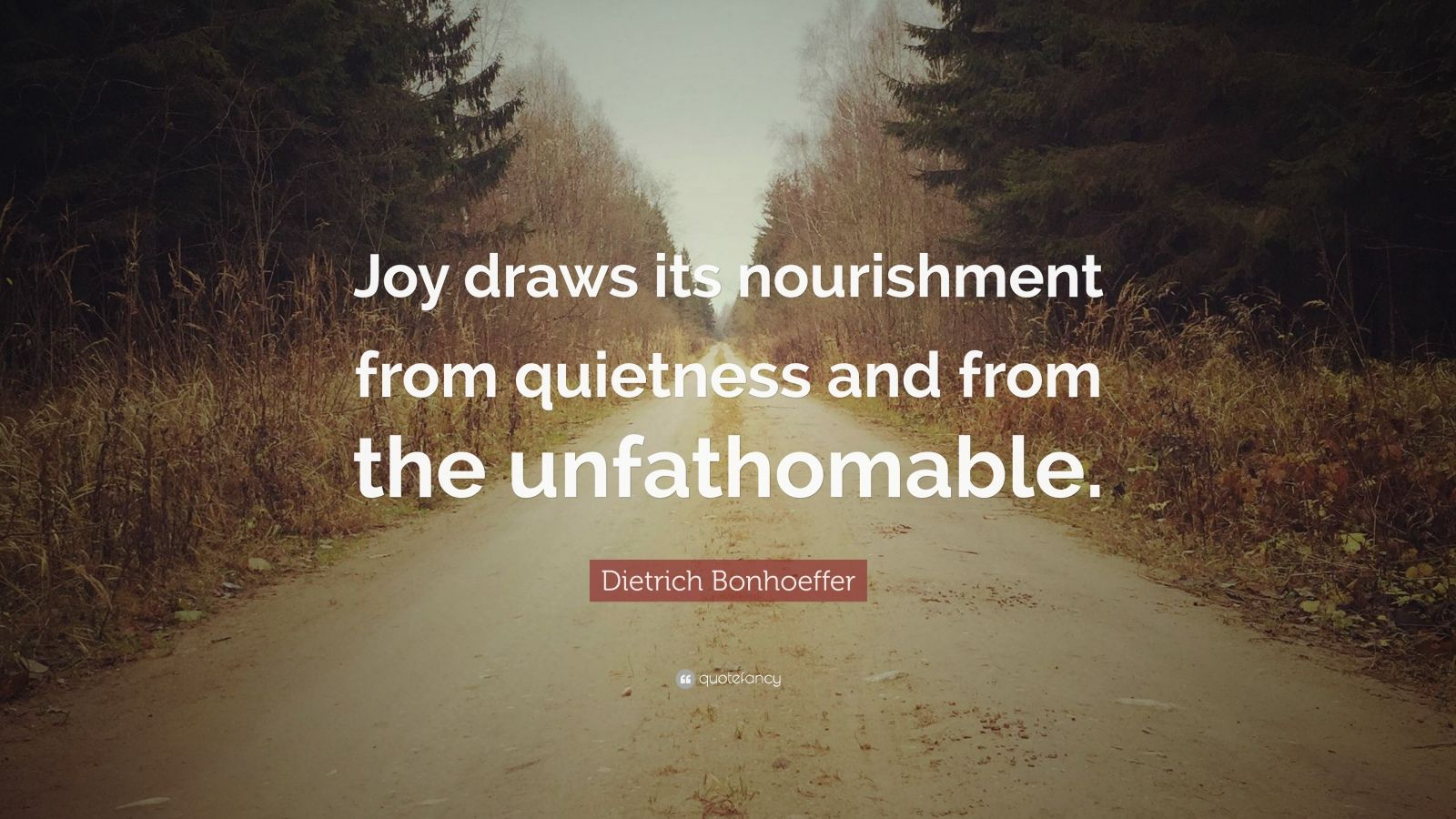 "Dietrich Bonhoeffer Quote: ""Joy draws its nourishment from quietness and from the unfathomable."""
