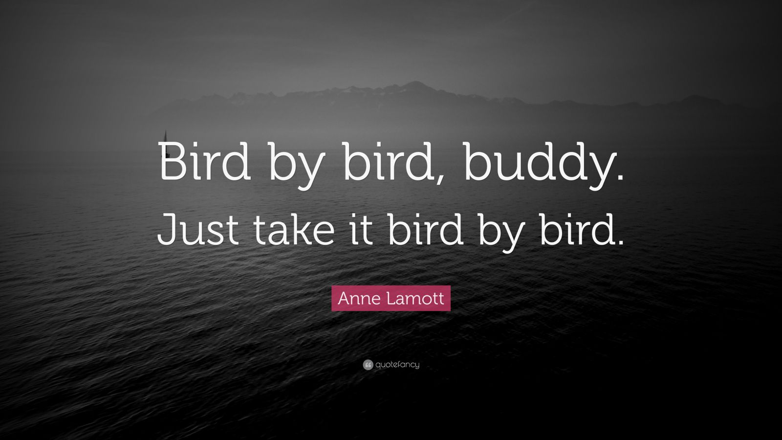 anne lamott s bird by bird summary Here's my book summary of bird by bird by anne lamott in it, you'll find high-level ideas, valuable lessons, and important action steps bird by bird summary you have to write to grow and become a better writer.