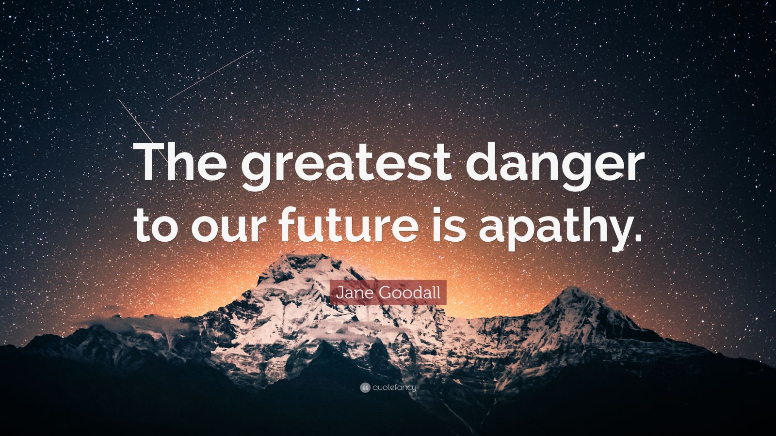 "Jane Goodall Quote: ""The greatest danger to our future is apathy."""