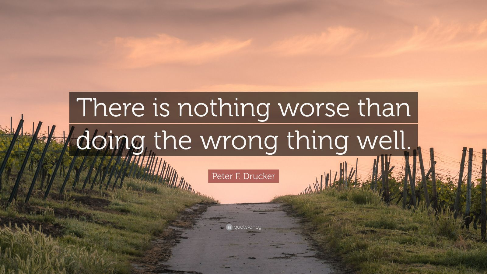 """Peter F. Drucker Quote: """"There is nothing worse than doing the wrong thing well."""""""