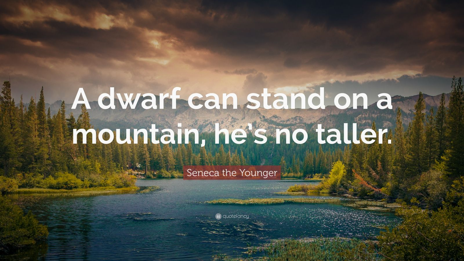 "Seneca the Younger Quote: ""A dwarf can stand on a mountain, he's no taller."""