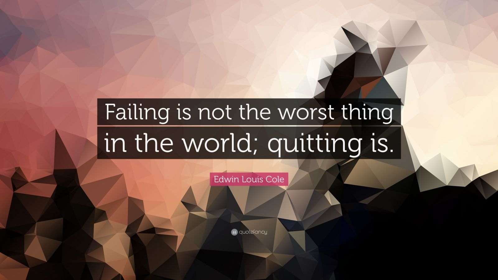 "Edwin Louis Cole Quote: ""Failing is not the worst thing in the world; quitting is."""