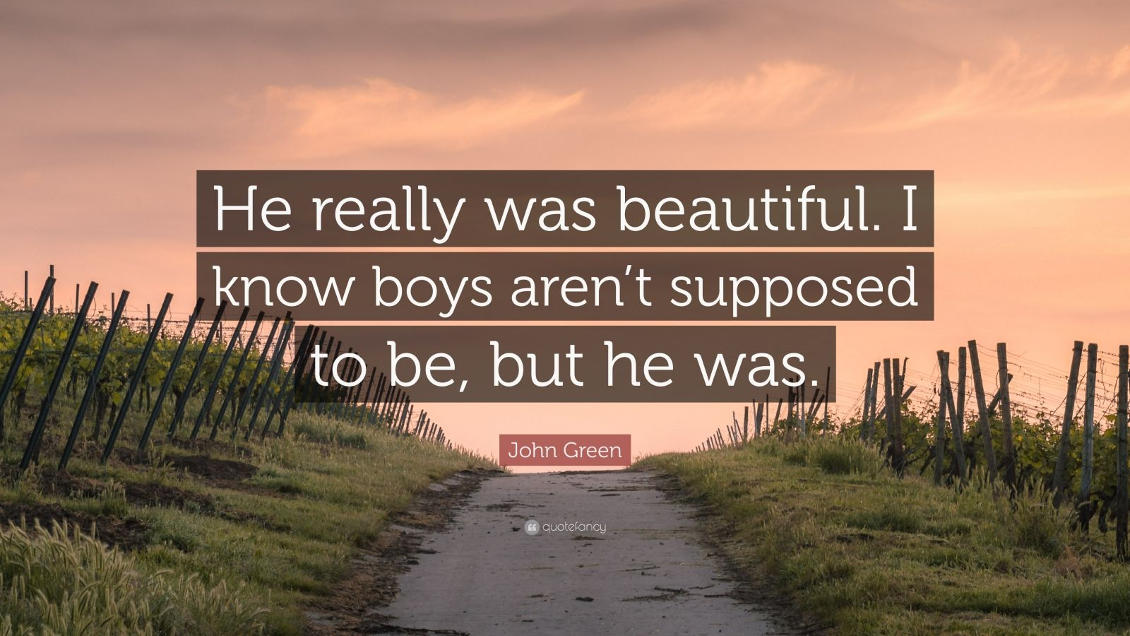 """John Green Quote: """"He really was beautiful. I know boys aren't supposed to be, but he was."""""""