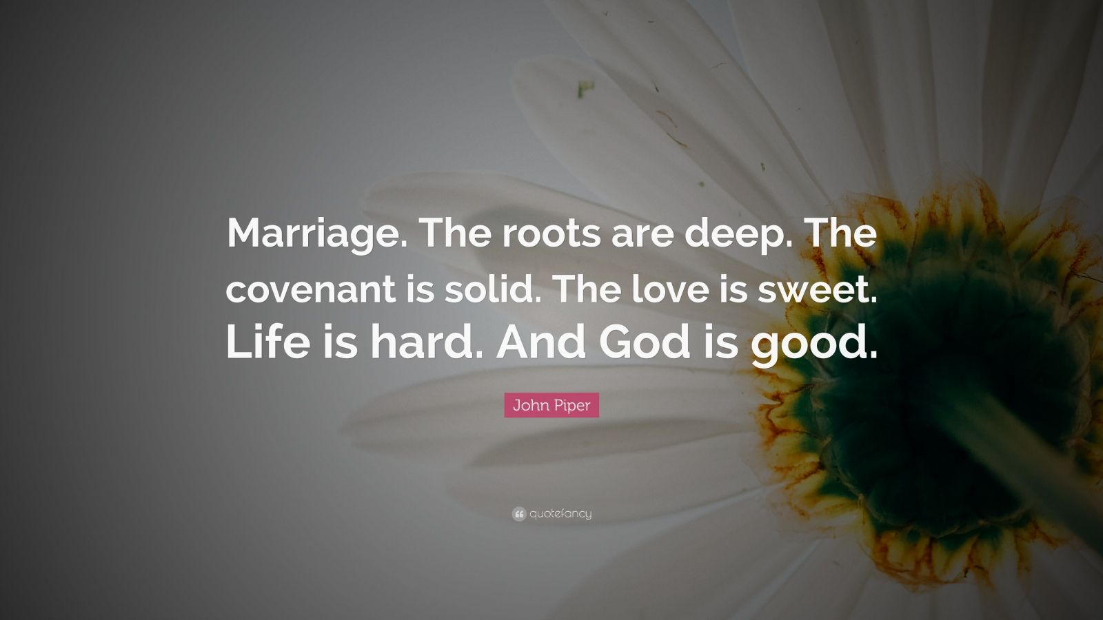 """John Piper Quote: """"Marriage. The roots are deep. The covenant is solid. The love is sweet. Life is hard. And God is good."""""""