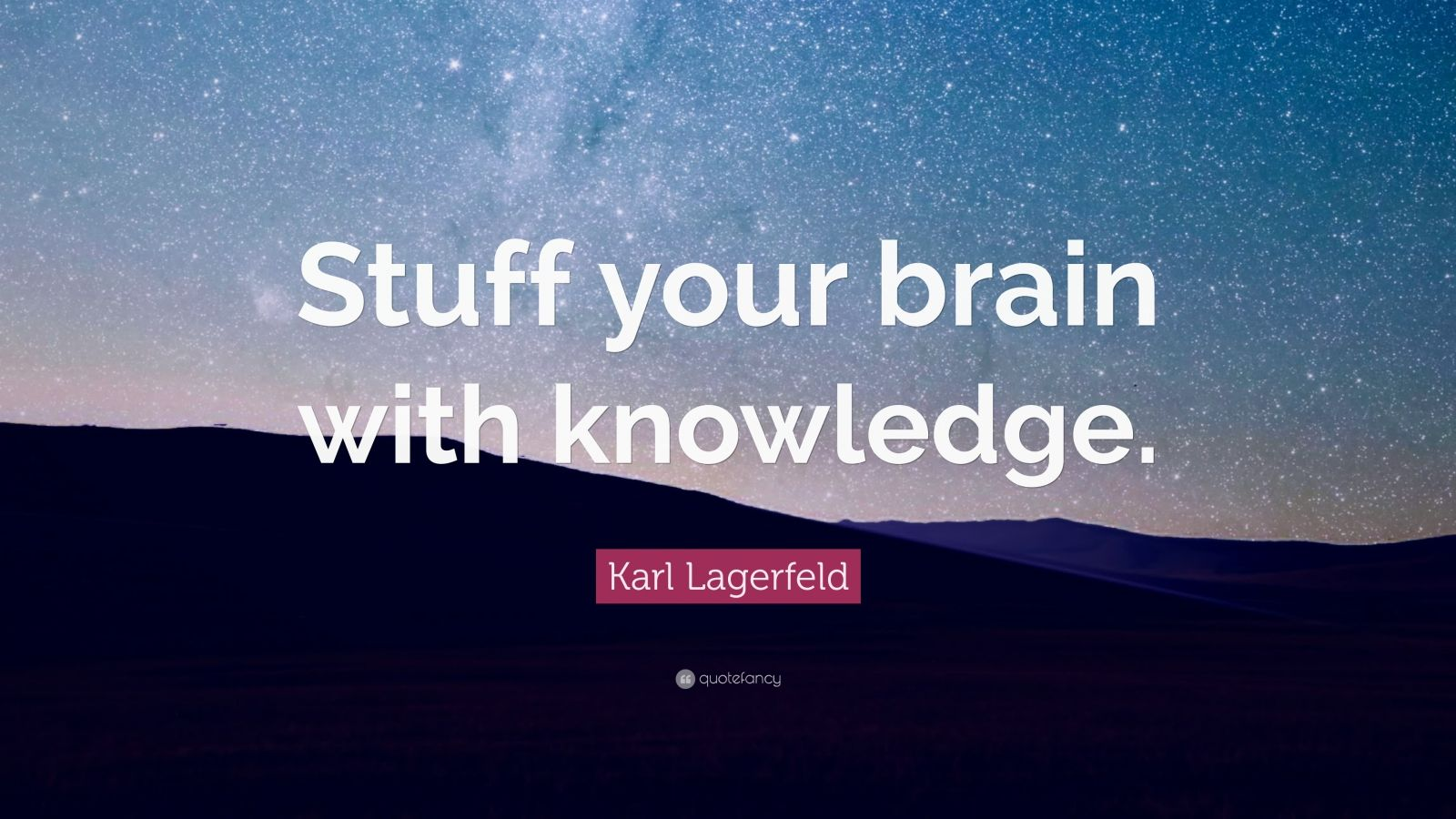 """Karl Lagerfeld Quote: """"Stuff your brain with knowledge."""""""